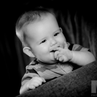 Photography by Martin Neeves Photography - www.martinneeves.com - Tel: +44 (0)7973 638591 - E-mail: martinneeves@googlemail.com
