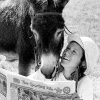 f08new-donkey-derby