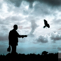 f34-falconer-with-hawk-sillhouette